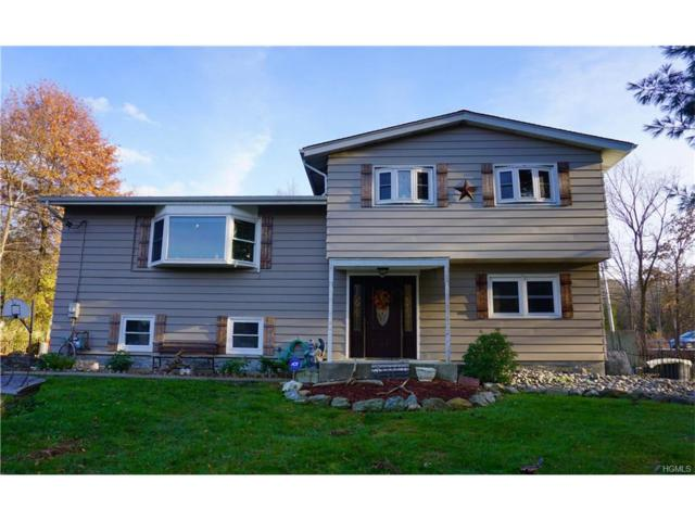 6 Lone Oak Circle, Monroe, NY 10950 (MLS #4751917) :: William Raveis Baer & McIntosh
