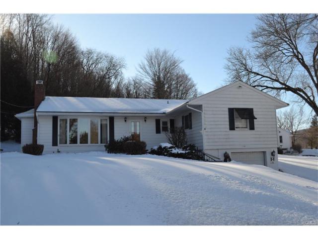 204 Nellie Hill Acres, Dover Plains, NY 12522 (MLS #4752202) :: Mark Boyland Real Estate Team