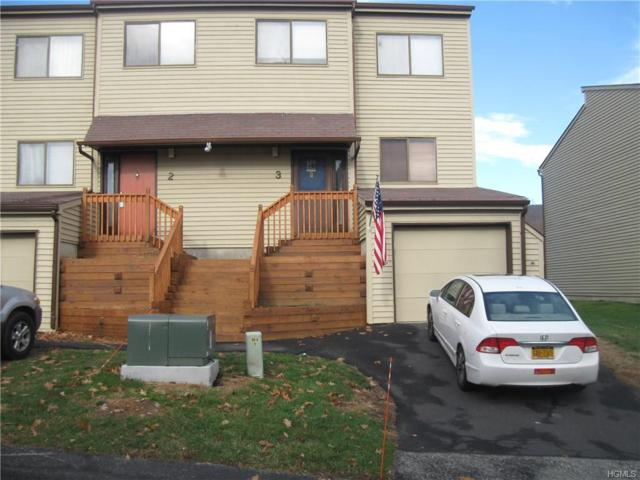 3 Sycamore Court, Highland Mills, NY 10930 (MLS #4752281) :: William Raveis Baer & McIntosh