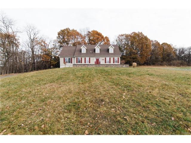 26 Collabar Road, Montgomery, NY 12549 (MLS #4752294) :: William Raveis Baer & McIntosh