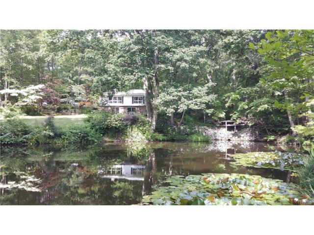 61 Jarmain Road, Monroe, NY 10950 (MLS #4752356) :: William Raveis Baer & McIntosh