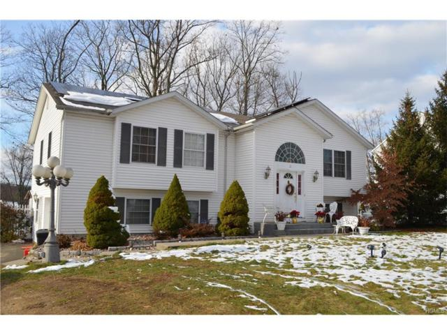 21 New Clarkstown Road, Nanuet, NY 10954 (MLS #4752406) :: William Raveis Baer & McIntosh