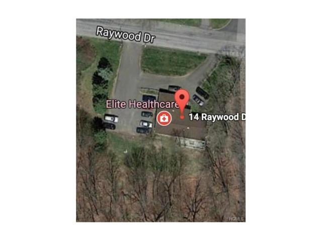 14 Raywood Drive, Monroe, NY 10950 (MLS #4752452) :: William Raveis Baer & McIntosh