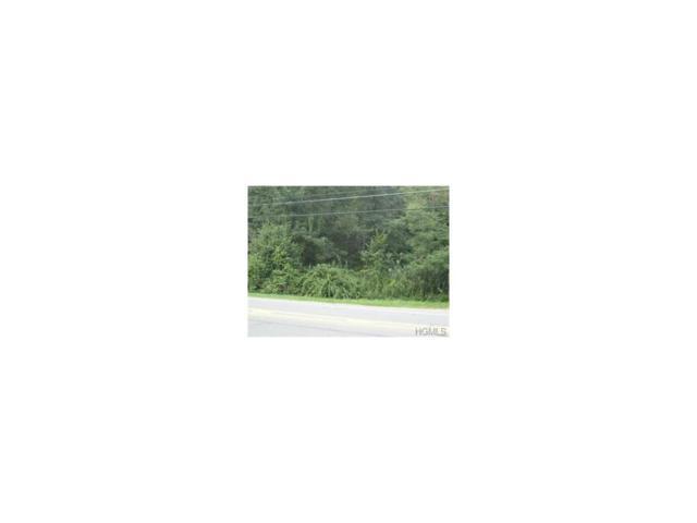 2201 State Route 208, Montgomery, NY 12549 (MLS #4752558) :: William Raveis Baer & McIntosh