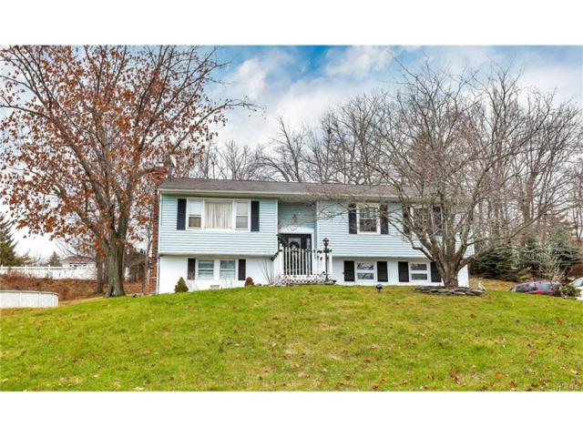 31 Pine Hill Road, Monroe, NY 10950 (MLS #4752637) :: William Raveis Baer & McIntosh