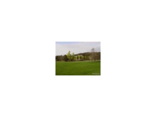 483 Black Meadow Road, Chester, NY 10918 (MLS #4752710) :: William Raveis Baer & McIntosh