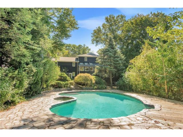462 Washington Street, Tappan, NY 10983 (MLS #4752730) :: William Raveis Baer & McIntosh