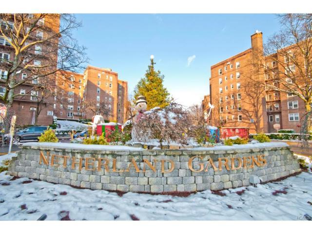 5615 Netherland Avenue 5G, Bronx, NY 10471 (MLS #4753029) :: Mark Boyland Real Estate Team