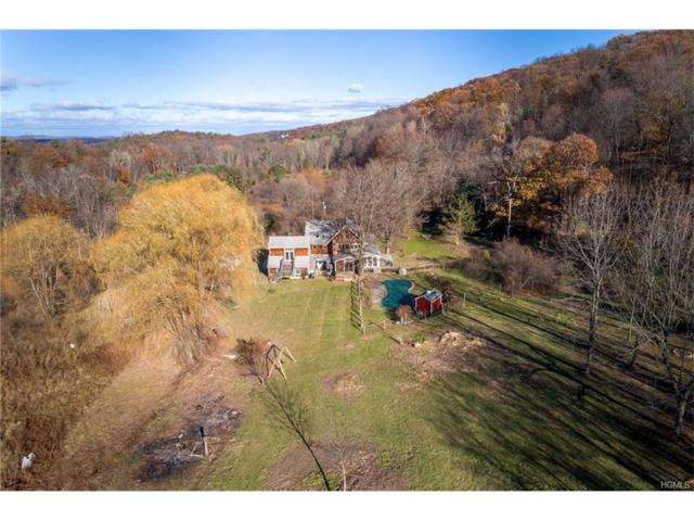 60 Lower 27 Knolls Road, High Falls, NY 12490 (MLS #4753073) :: Mark Boyland Real Estate Team