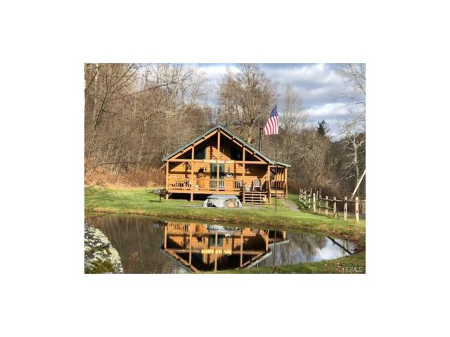 Lot 6 and 7 County Rd 134, Fremont Center, NY 12736 (MLS #4753121) :: Mark Boyland Real Estate Team