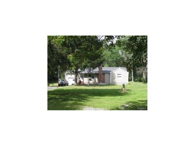 283 Saybrook Valley Road, Call Listing Agent, NY 12423 (MLS #4753232) :: Michael Edmond Team at Keller Williams NY Realty