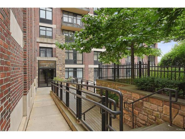 3536 Cambridge Avenue 6B, Bronx, NY 10463 (MLS #4753357) :: Mark Boyland Real Estate Team