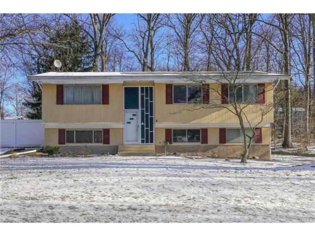24 N Lorna Lane, Airmont, NY 10952 (MLS #4753506) :: William Raveis Baer & McIntosh