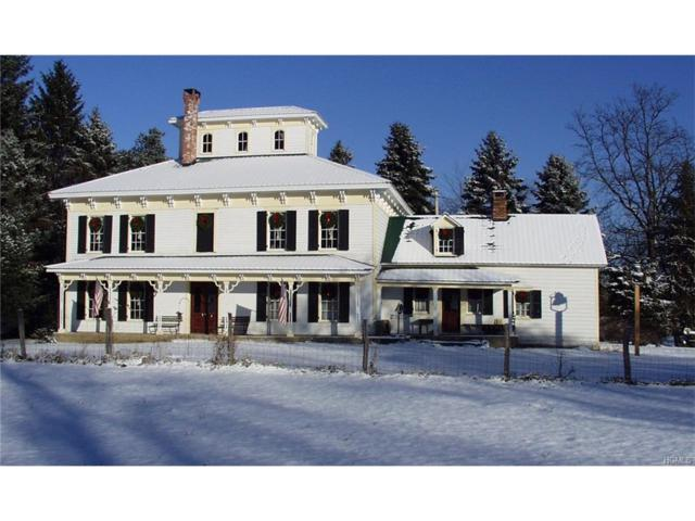 50 Wallkill Road, Montgomery, NY 12586 (MLS #4753512) :: William Raveis Baer & McIntosh