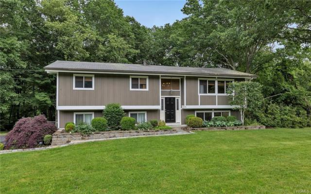 6 Hunter Lane, Somers, NY 10589 (MLS #4800178) :: Mark Boyland Real Estate Team