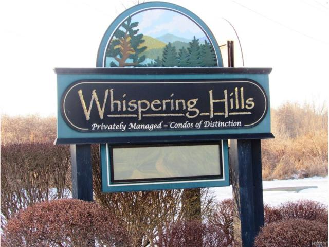 2005 Whispering Hills, Chester, NY 10918 (MLS #4800301) :: Mark Boyland Real Estate Team