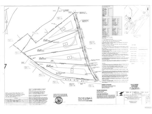 Port Orange Road, Huguenot, NY 12746 (MLS #4800418) :: Mark Boyland Real Estate Team