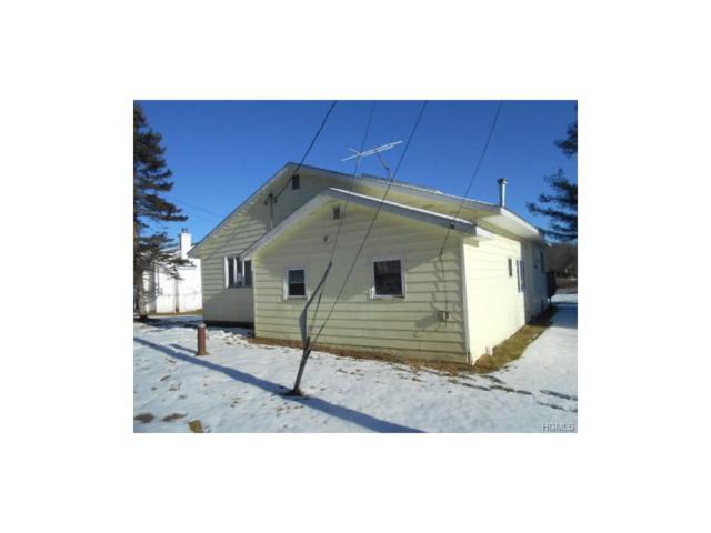 9 West Lane, Parksville, NY 12768 (MLS #4800441) :: Mark Boyland Real Estate Team