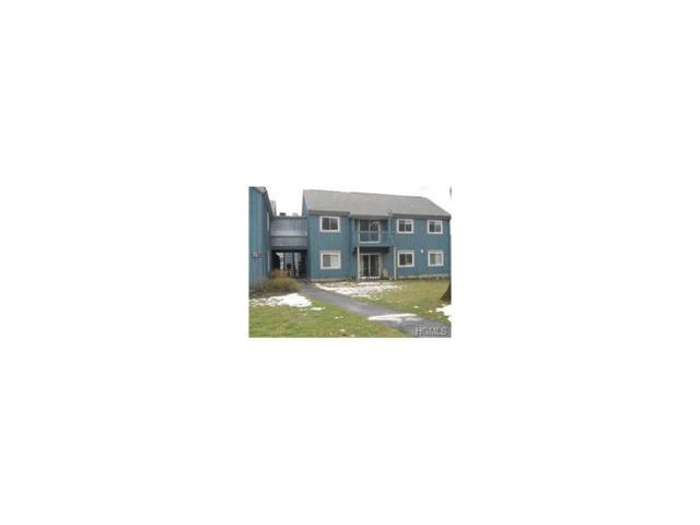 64 Sterling Street #64, Beacon, NY 12508 (MLS #4800457) :: Mark Boyland Real Estate Team