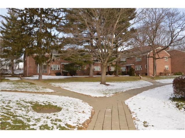 59 Carpenter D, Mount Kisco, NY 10549 (MLS #4800518) :: Mark Boyland Real Estate Team