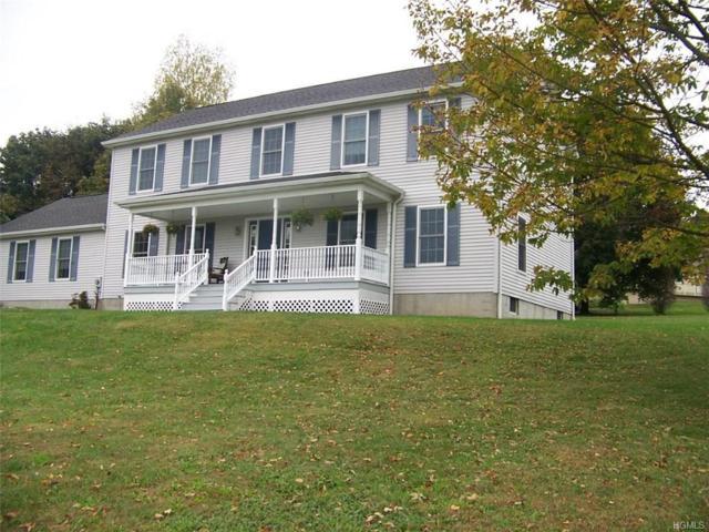 3450 Route 82, Millbrook, NY 12545 (MLS #4800571) :: Mark Boyland Real Estate Team