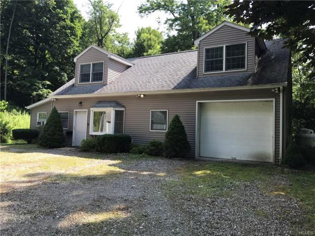 38 Nanny Hill Road, Pawling, NY 12564 (MLS #4800621) :: Mark Boyland Real Estate Team