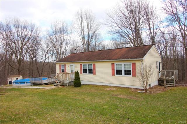 43 Breezy Lane, Port Jervis, NY 12771 (MLS #4800879) :: Mark Boyland Real Estate Team