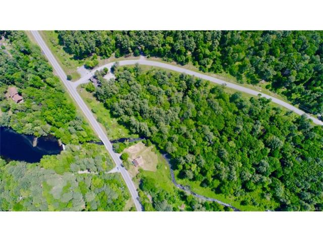 2 Chapin Trail, White Lake, NY 12786 (MLS #4800887) :: Shares of New York