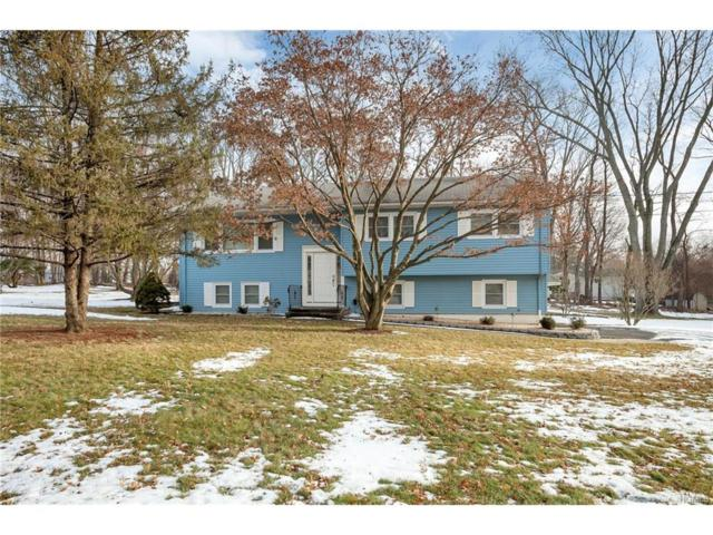 12 Blossom Road, Airmont, NY 10901 (MLS #4800902) :: William Raveis Baer & McIntosh