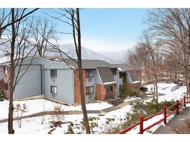 8 Northern Avenue F3, Cold Spring, NY 10516 (MLS #4801132) :: Mark Boyland Real Estate Team