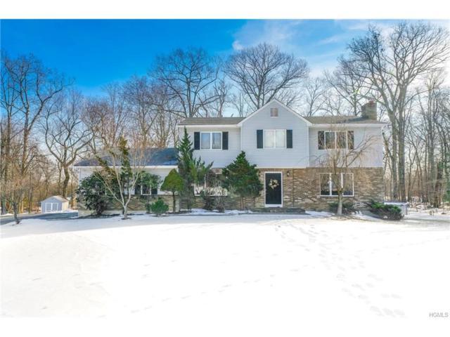 14 Amanda Court, Airmont, NY 10952 (MLS #4801155) :: William Raveis Baer & McIntosh
