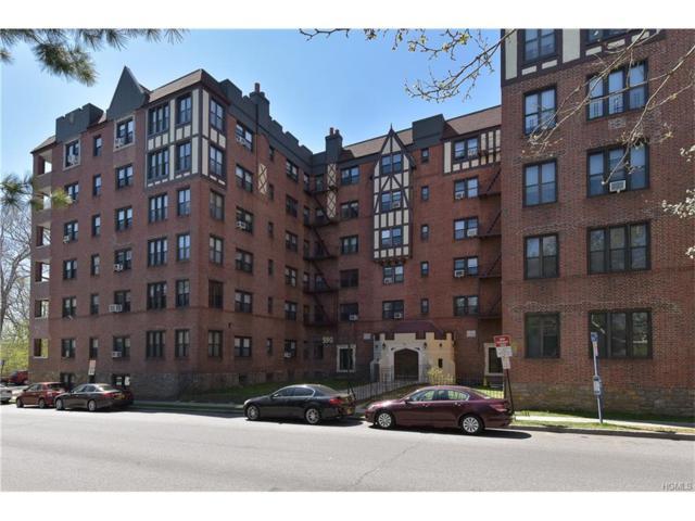 590 E Third Street 4-A, Mount Vernon, NY 10553 (MLS #4801311) :: Michael Edmond Team at Keller Williams NY Realty