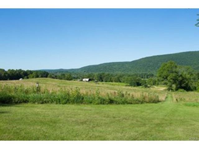 2259 Clove Road, Lagrangeville, NY 12540 (MLS #4801340) :: Mark Boyland Real Estate Team