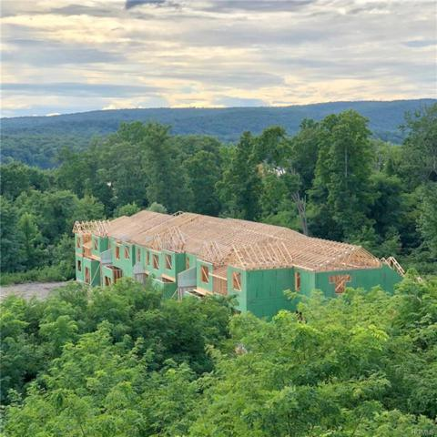 295 Hudson View Terrace, Hyde Park, NY 12538 (MLS #4801422) :: William Raveis Legends Realty Group