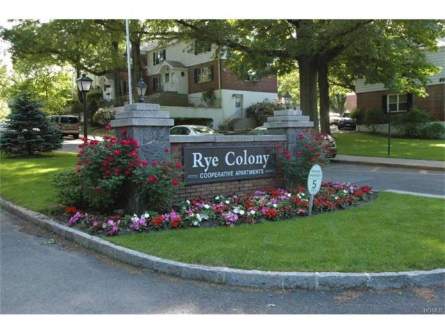 26 Peck Avenue 26A, Rye, NY 10580 (MLS #4801513) :: Mark Boyland Real Estate Team