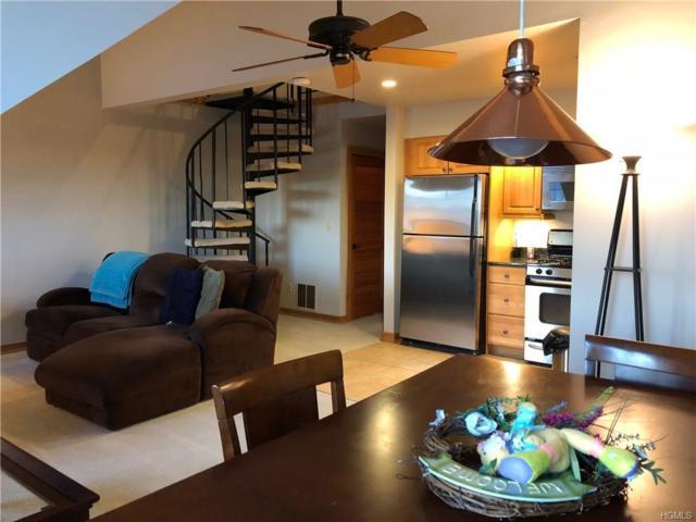 107 High Avenue #305, Nyack, NY 10960 (MLS #4801751) :: Mark Boyland Real Estate Team
