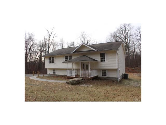 304 East Road, Wallkill, NY 12589 (MLS #4801767) :: Mark Boyland Real Estate Team