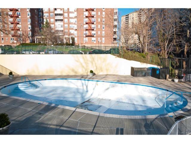 555 Kappock Street 15R, Bronx, NY 10463 (MLS #4801831) :: Mark Boyland Real Estate Team