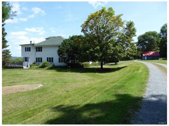 1062 S Hill Road, Grahamsville, NY 12740 (MLS #4801926) :: Mark Boyland Real Estate Team
