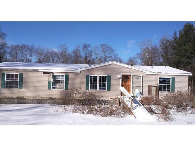 265 Spook Hole Road, Ellenville, NY 12428 (MLS #4801979) :: Mark Boyland Real Estate Team