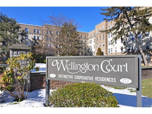 472 Gramatan Avenue U1, Mount Vernon, NY 10552 (MLS #4802049) :: Mark Boyland Real Estate Team