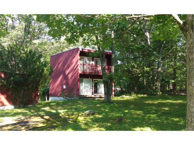 14 Bannister Lane, Wingdale, NY 12594 (MLS #4802084) :: Mark Boyland Real Estate Team