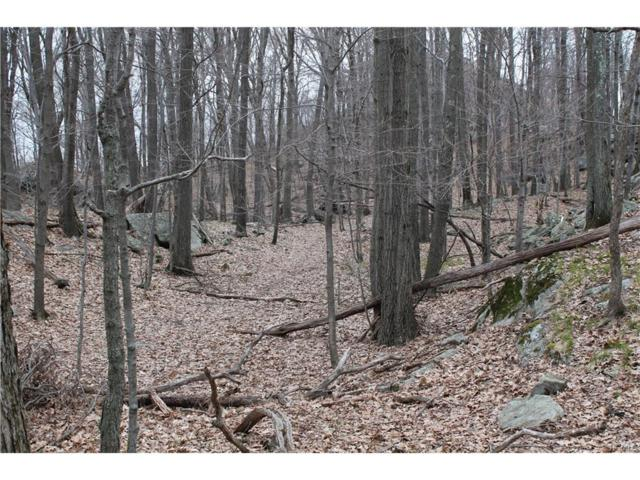 Woodmont Road, Hopewell Junction, NY 12533 (MLS #4802174) :: Mark Seiden Real Estate Team