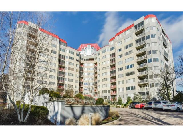 10 Stewart Place 6BE, White Plains, NY 10603 (MLS #4802210) :: Mark Boyland Real Estate Team
