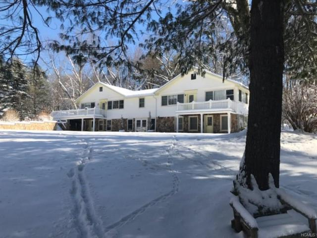 2781 New Prospect Road, Pine Bush, NY 12566 (MLS #4802295) :: Mark Boyland Real Estate Team