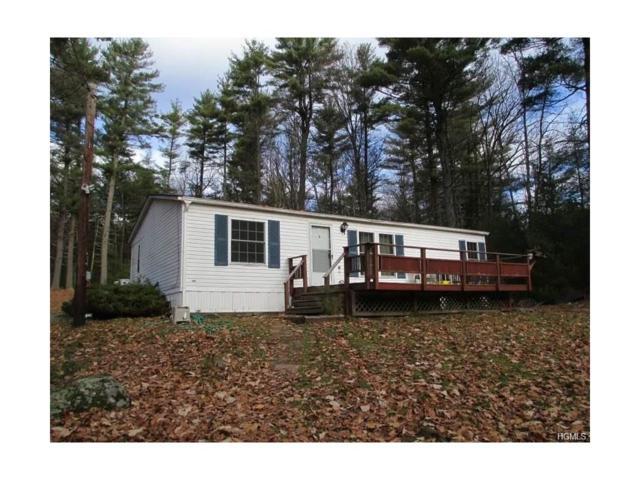 11 Hartung Road, Highland Lake, NY 12743 (MLS #4802338) :: Mark Boyland Real Estate Team