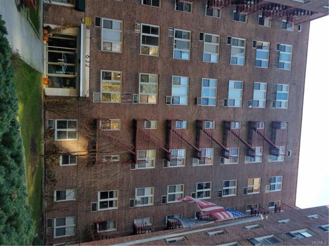 632 Palmer Road 4-N, Yonkers, NY 10701 (MLS #4802342) :: Mark Boyland Real Estate Team