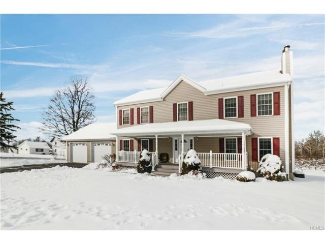 249 Costa Road, Highland, NY 12528 (MLS #4802473) :: Mark Boyland Real Estate Team