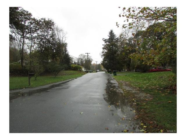 25 Terwilliger Road, Hyde Park, NY 12538 (MLS #4802557) :: Michael Edmond Team at Keller Williams NY Realty