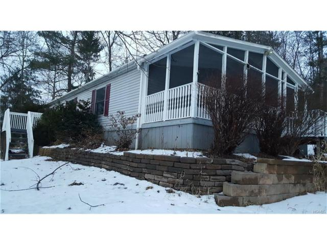 19 South Drive, Saugerties, NY 12477 (MLS #4802731) :: Mark Boyland Real Estate Team
